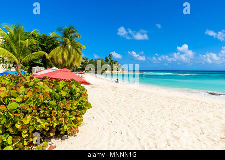 Dover Beach - tropical beach on the Caribbean island of Barbados. It is a paradise destination with a white sand beach and turquoiuse sea. - Stock Photo