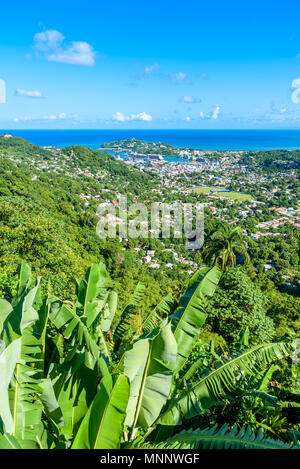 Castries, Saint Lucia - Tropical coast beach on the Caribbean island of St. Lucia. It is a paradise destination with a white sand beach and turquoiuse - Stock Photo