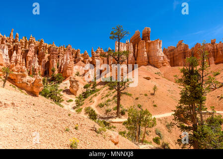 Bryce Canyon National Park - Hiking on the Queens Garden Trail and Najavo Loop into the canyon, Utah, USA. - Stock Photo