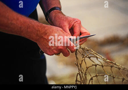 HANDS OF A FISHERMAN REPAIRING FISHING NETS. HONFLEUR, NORMANDY, FRANCE, JUNE 2014. The hands of a local fisherman repairing his fishing nets on the Q - Stock Photo