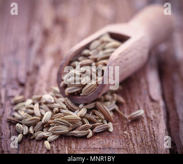 Fennel seeds in a scoop on wooden surface - Stock Photo