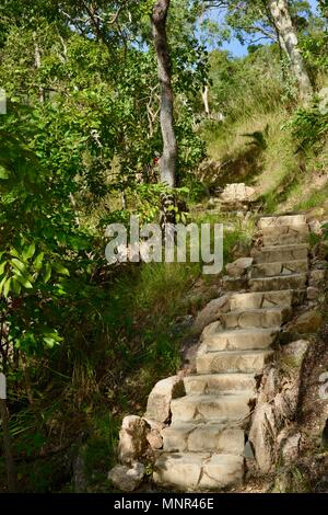 Preformed stone like concrete steps going up in a forest, Jourama Falls, Bruce Hwy, Yuruga QLD, Australia, - Stock Photo
