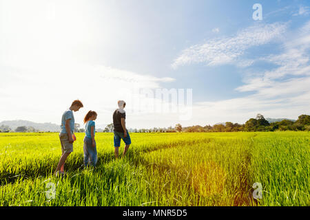 Family of father and two kids enjoying peaceful walk in rice fields with breathtaking views over mountains in Sri Lanka - Stock Photo