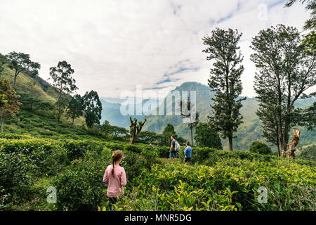 Family of father and two kids enjoying breathtaking views over mountains and tea plantations in Ella Sri Lanka - Stock Photo