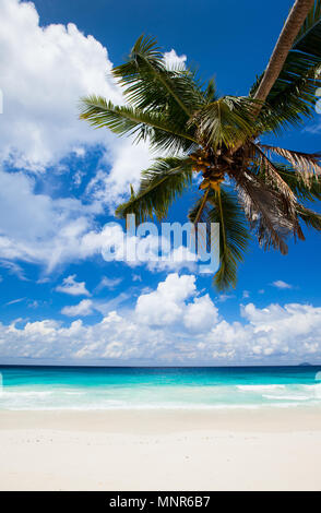 Stunning tropical beach on Mahe island in Seychelles - Stock Photo