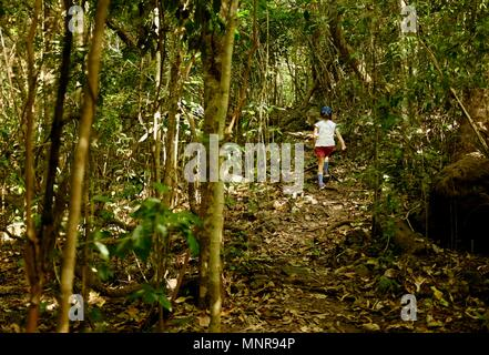 Young girl walks through a forest on a track shot from behind, Rollingstone QLD, Australia - Stock Photo