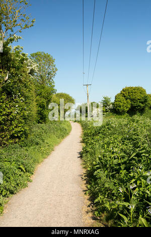 Looking in the direction of Shillingstone on the Dorset Trailway near Fiddleford Mill not far from Sturminster Newton. The Dorset Trailway is largely  - Stock Photo