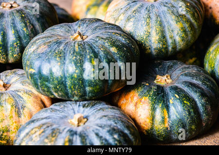 Assortment of fresh green pumpkins on market stall - Stock Photo