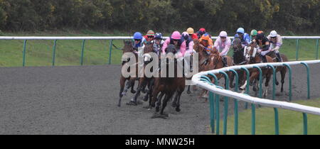 Lingfield Park Race Track, Lingfield, England. 30 March 2011 - Stock Photo