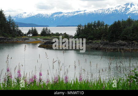 This glorious view near Juneau captures many of the natural elements of the vast granduer that is Alaska. Mountains, water, forests, shoreline, wildfl - Stock Photo