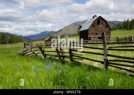 Lauderdale Junction, Washington / USA - May 9, 2018:  Abandoned homestead between Ellensburg and Leavenworth in Kittitas County Washington. - Stock Photo