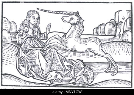. English: Unicorn. This woodcut is from the second half of the 15th c. The legend explains that a unicorn can only be attracted by the purity of a virgin, on which he will lay his head in her lap and fall asleep. As Europe emerged from the Dark Ages, the unicorn was understood to be the monoceros, written about by Pliny and others. Since no other images were evident, many considered a single horned rhinoceros to be a unicorn. 1465. Unknown 1213 Unicorn wa - Stock Photo