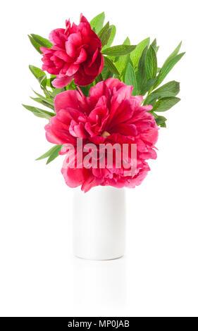 Peony flower in white vase isolated on white