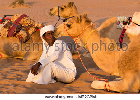 Camel driver with its camels in Oman desert - Stock Photo
