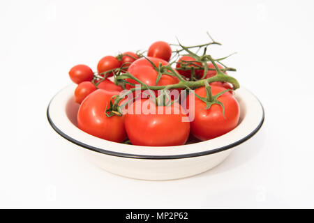 red vine tomatoes in white bowl - Stock Photo