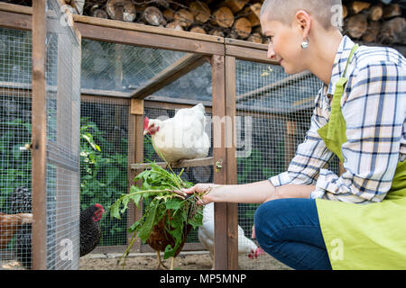 Young woman feeding her free range chickens. Egg laying hens and young female farmer. Healthy organic eating lifestyle. Sustainable farm. - Stock Photo