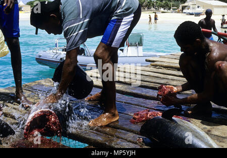 Men cleaning fish on a wooden boardwalk near the beach, at Sal , Cape Verde islands.Africa - Stock Photo