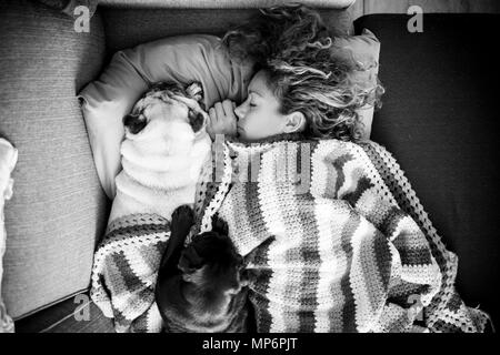 a woman with long curly hair sleeping in a woolen blanket with two pug dogs - Stock Photo