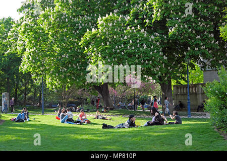 Young people relaxing on the lawn by a flowering horse chestnut tree in spring in a park in sunshine in Paris France   KATHY DEWITT - Stock Photo