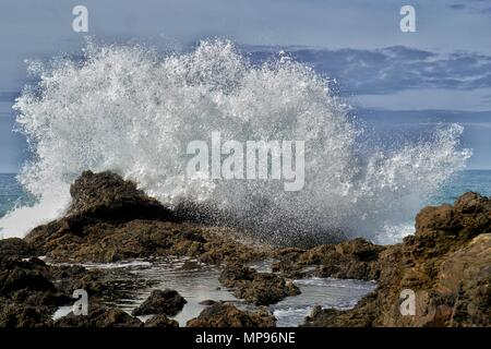 Waves Crash over the rocks at Mermaid Pools on the Tutukaka Coast, Northern New Zealand. Tides and timing are key to witnessing this magical sight - Stock Photo