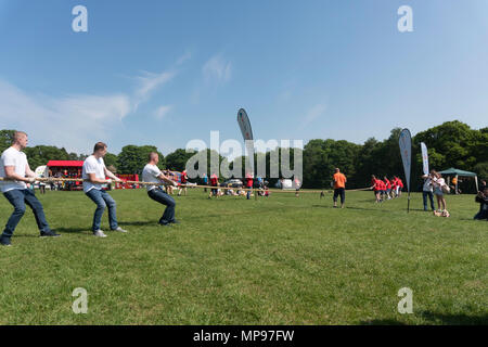 A Martin House Hospice charity event tug of war taking place in Roundhay Park, Leeds, Yorkshire, England, UK - Stock Photo