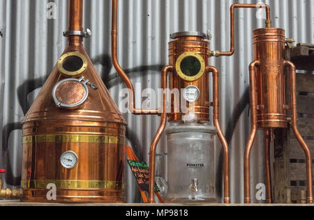 A still or distillery equipment made from copper at a gin manufacturer in central london. Micro breweries and distilling gin with basic kit and gear. - Stock Photo