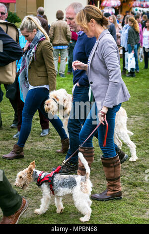 Visitors at Stokesley Show, North Yorkshire, England, UK - Stock Photo
