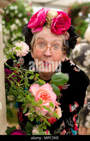 London, UK. 21st May 2018. Su Pollard holding 'Fragrant Celebration' a new rose introduced at The Chelsea Flower Show by Peter Beales Roses. The company received their 25th gold medal whilst celebrating their 50th Anniversary. Credit: Keith mindham/Alamy Live News - Stock Photo