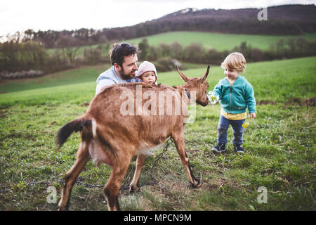 A father and his toddler children with a goat outside in spring nature. - Stock Photo