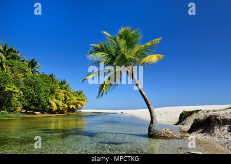 Wild beach on south-western Dominican Republic in the close of the Paraiso village - Stock Photo