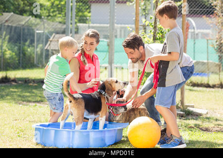 Family playing with dog from animal shelter - Stock Photo