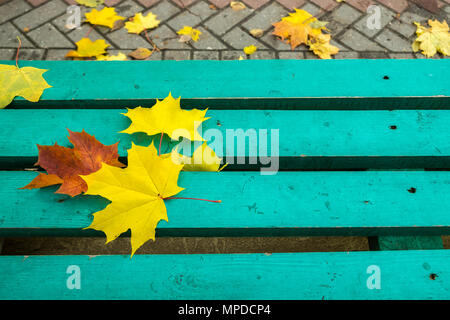Yellow and red maple leaves on turquoise painted old wooden bench in public park. Autumn day. Autumnal mood. Copy space. - Stock Photo