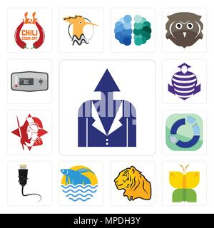 Set Of 13 simple editable icons such as personal development, buterfly, tiger, betta fish, ethernet, sector, spartan, purple cobras, thermostat can be - Stock Photo