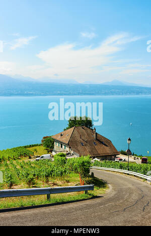 Lavaux, Switzerland - August 30, 2016: Road leading to Lavaux Vineyard Terraces hiking trail, Lake Geneva and Swiss mountains, Lavaux-Oron district in - Stock Photo