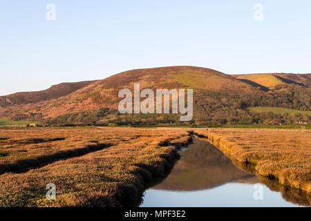 Bossington Hill Viewed From Porlock Marsh on the South West Coast Path, Exmoor National Park, Porlock, Somerset, UK - Stock Photo