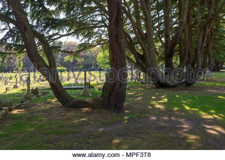 Bournemouth Crematorium, Strouden Ave, Bournemouth, Dorset, UK - Stock Photo