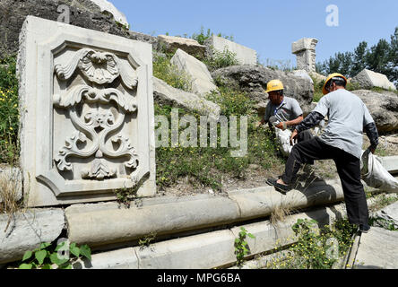 Beijing, China. 23rd May, 2018. Staff members clean up weeds at ruins of Yuanying Guan (Immense Ocean Observatory) at Yuanmingyuan in Beijing, capital of China, May 23, 2018. The four-month reinforcement project of ruins of Immense Ocean Observatory at the historical site of Yuanmingyuan started lately. Credit: Luo Xiaoguang/Xinhua/Alamy Live News - Stock Photo