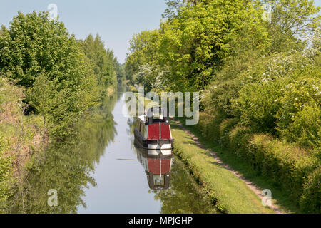 View of the Birmingham & Fazeley canal, Middleton Lakes, Staffordshire in spring with green foliage on the banks - Stock Photo