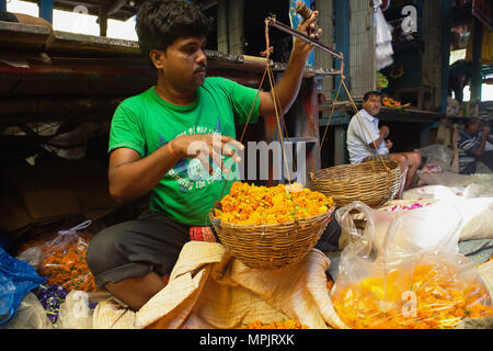 India, West Bengal, Kolkata, Vendor at Malik Ghat Flower Market. - Stock Photo
