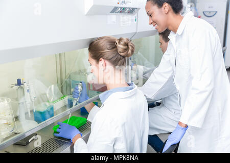 Group of scientists working in research laboratory - Stock Photo