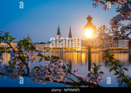 Burn lantern in park with branches of cherry blossom flowers on beautiful Alster river and Hamburg town hall - Rathaus on evening twilight - Stock Photo