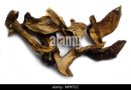 Dry mushrooms isolated over the white background - Stock Photo