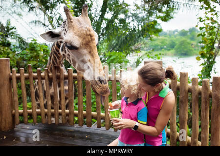 Family feeding giraffe in zoo. Children feed giraffes in tropical safari park during summer vacation in Singapore. Kids watch animals. Mother and litt - Stock Photo