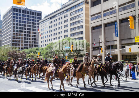 Toronto Canada Ontario University Avenue Police Equestrian Day Mounted Police public safety law enforcement horse animal parade - Stock Photo