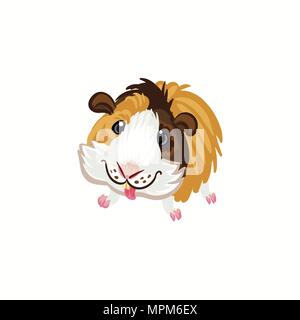 Guinea pig tricolor happy brown clipart illustration vector - Stock Photo