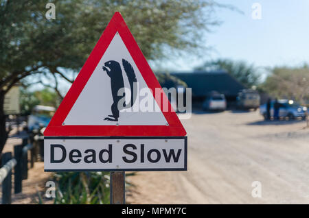 Dead Slow sign with meerkat at dusty desert town Solitaire - Stock Photo