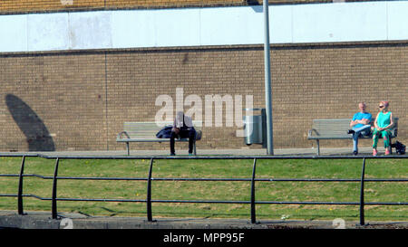 Glasgow, Scotland, UK 24th May.UK Weather: Sunshine all the way along the forth and Clyde canal into Clydebank Shopping centre as locals and tourists enjoy the great day of  hot weather.  Gerard Ferry/Alamy news - Stock Photo