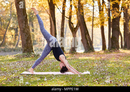 Mid adult woman in forest practicing yoga, downward facing dog position - Stock Photo