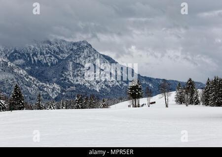 Winter in the Allgäu.  Winter im Allgäu. - Stock Photo