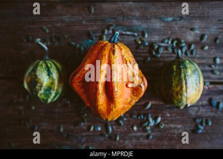 Orange Ornamental pumpkin - Stock Photo